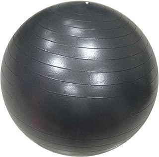RevTime 超厚手アンチバーストジムボール 65cm エアポンプエクササイズボール ヨガ バランス フィットネス デスクチェア ダークグレー