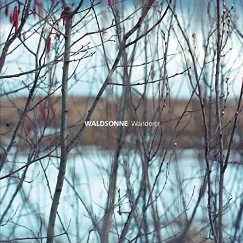 Waldsonne