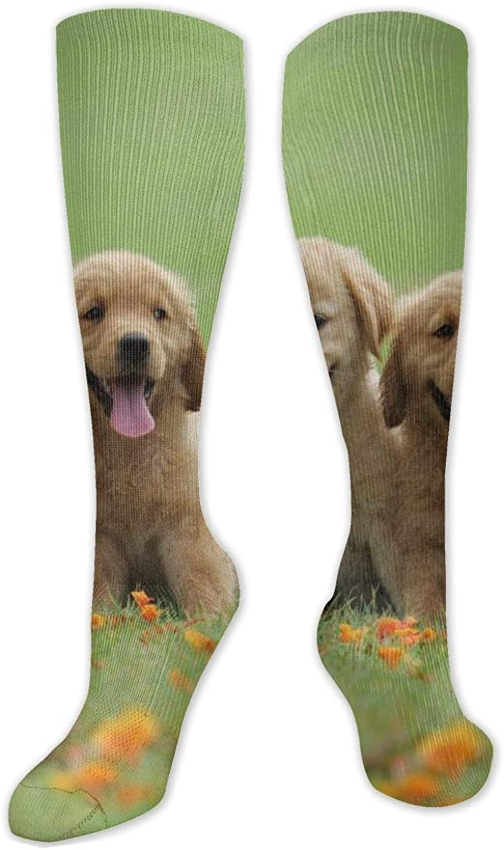 Two Cute Puppy Knee High Socks Leg Warmer Dresses Long Boot Stockings For Womens Cosplay Daily Wear