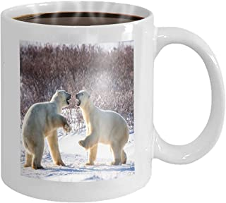 Coffee cup mug two polar bears playing each other tundra canada excellent illustration 11oz