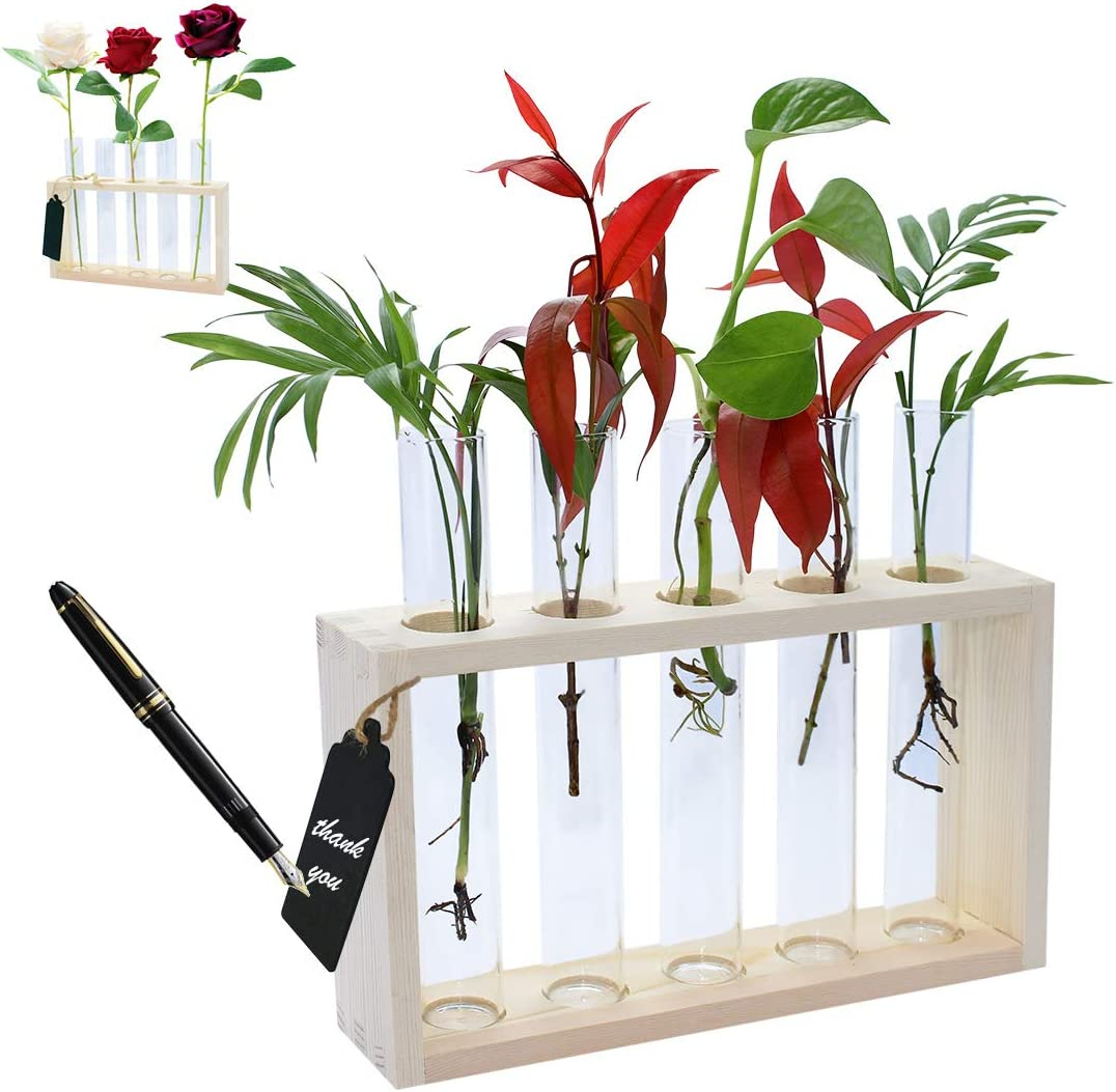 Sales results No. 1 DIKOO Wall Hanging Mounted Glass Vase Modern Planter online shopping Bud Flower