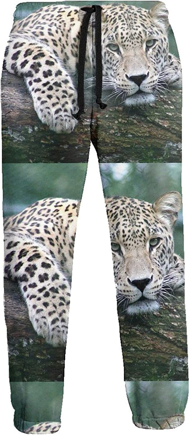 KAWAHATA Resting Leopard Men's Pants with Pockets Tapered Athletic Sweatpants 3D Casual Active Sports Pants