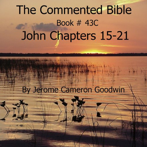 The Commented Bible: Book 43C - John audiobook cover art
