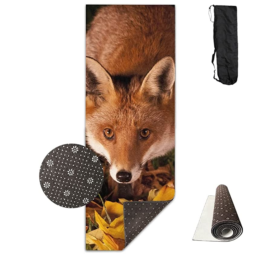 Fox Wallpaper Comfort Unisex Yoga Mat For Yoga,Exercise,Pilates,Sports & Outdoors