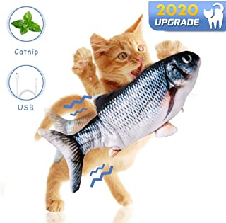 Fish Game For Cats