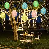 Ivenf Easter Egg String Lights, 19.5ft 48 LEDs Lantern String Lights 8 Pcs, 8 Models Fairy Lights, for Indoor and Outdoor Easter Decorations, Spring Party Holidays Favors Supplies