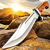 Ridge Runner Woodland Reverie Bowie/Fixed Blade Knife - Stainless Steel, Full Tang - Genuine Zebrawood - Nylon Sheath - Collecting, Field Use, Display and More - 13 1/4'