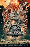 Poster Jurassic World Fallen Kingdom Movie 70 X 45 cm