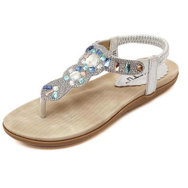 ストレージ主流キャンバスXIAOLIN 夏の金と銀クリップのつま先ラインストーンのサンダルフラットヒールホリデーウィンドローマの女性のサンダルダイヤモンドの学生のヒールの高さ2.5 Cm(オプションのサイズ) (色 : シルバー しるば゜, サイズ さいず : EU36/UK3.5/CN35)