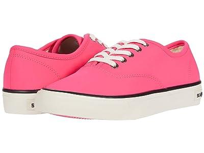 SeaVees Legend Sneaker Neon (Neon Pink) Women