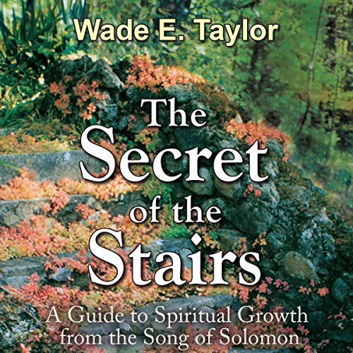 The Secret of the Stairs audiobook cover art