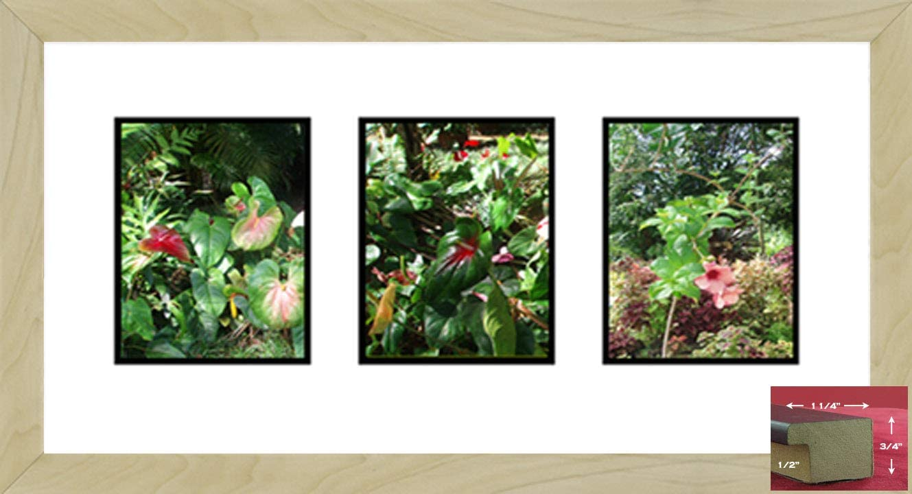 Frames Ranking TOP5 by Mail Light Maple 3 Indianapolis Mall Opening x 7 Frame 5 Brown Picture