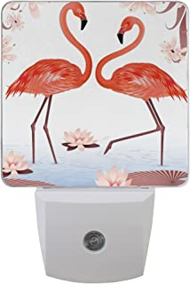 ALAZA 2 Pack Wonderful Flamingo Bird Water Lily Fan Butterfly LED Night Light Dusk to Dawn Sensor Plug in Night Home Decor Desk Lamp for Adult