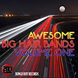 Awesome Big Hair Bands, Vol. One