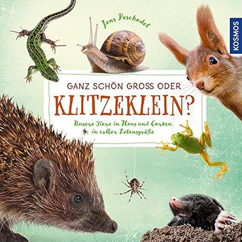 Ganz schön groß oder klitzeklein?: Unsere Tiere in Haus und Garten in voller Lebensgröße