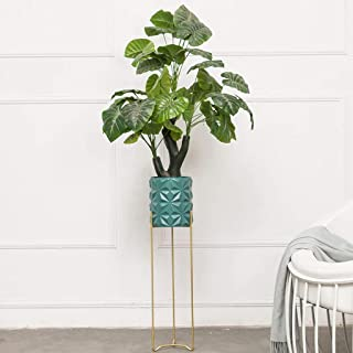 Asdfnfa Flower Stand Simple and Innovative Single-Layer Vertical Shelf Balcony Living Room Hanging Orchid Frame Pot Plante...