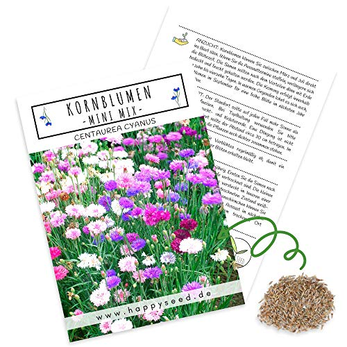 Kornblumen Samen (Centaurea cyanus) - Wunderschön leuchtende Blumen mit langer Blütezeit, kleinwüchsig - ideal für den Balkonkasten (Mini Mix, 1000 Korn, 50 cm)
