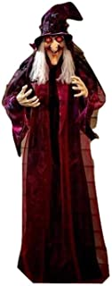 """Best KNL Store 71"""" Life Size Hanging Animated Talking Witch Halloween Haunted House Prop Decor (1) Review"""