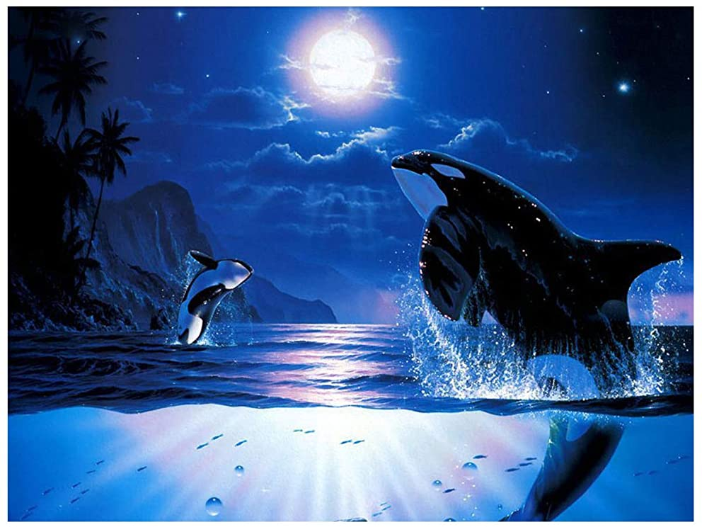 Blxecky DIY 5D Diamond Painting by Number Kit for Adult, Full Drill Diamond Embroidery Dotz Kit Home Wall Decor-Whale(30X40CM/12X16inch)