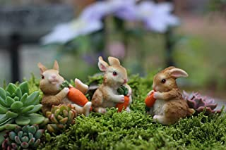 MUAMAX Miniature Bunnies Fairy Rabbit Figurines Fairy Garden Animal Terrarium Decor Little Rabbit Statue 3 Sets