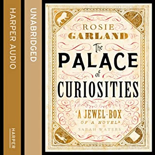 The Palace of Curiosities cover art