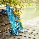 Zoom IMG-2 newdora 22 skateboard cruiser completo