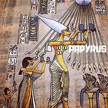 Papyrus of Fenaam Hussien