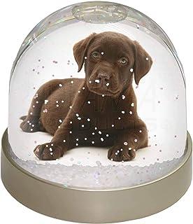 Advanta Chesapeake Bay Retriever Schneekugel für Hunde, Mehrfarbig, 9,2 x 9,2 x 8 cm