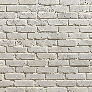 Koni Brick Old Chicago Blanc 10.76 sq. ft. Flats 0.65 in. x 8.20 in. x 2.50 in. Thin Brick