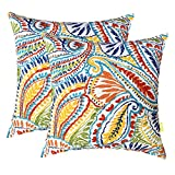 LVTXIII Outdoor Throw Pillow Covers 17 x 17 Inch, Modern Paisley Pattern...