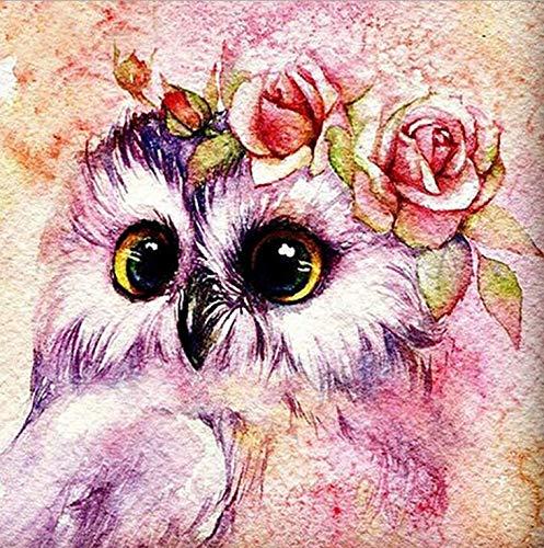 Blockbuster DIY Diamond Owl Painting and Flower New Cartoon Colorful Kitten 5D Rubik Cube Diamond Embroidery 60x70cm