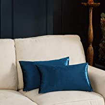 GIGIZAZA Decorative Small Lumbar Pillow Covers,Cushion Covers Velvet Blue Pillows,Sofa Throw 12 X 20 Pillow Covers