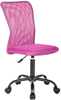 Surprising Amazon Com Pink Home Office Furniture Furniture Home Home Interior And Landscaping Transignezvosmurscom