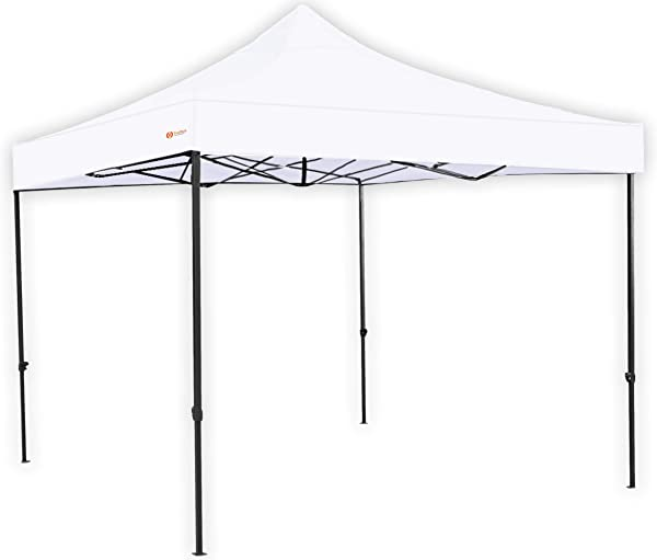 TrioTech Pop Up Canopy Tent 10x10 Feet Canopy Easy To Set Up UV Coated And Waterproof Includes Carry Bag And Installation Manual