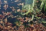 EXCOLO Teichnetz 8 x 8 m + 50 Erdanker Laubschutznetz Reihernetz Silonetz Laubnetz Vogelschutznetz Blätter Schutz Garten-teich Gewässer See Becken