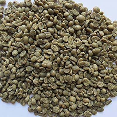 3 Lb, Single Origin Unroasted Green Coffee Beans, Specialty Grade From Single Nicaraguan Estate, Direct Trade