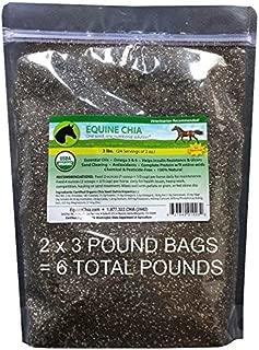 Amazon.com: Equine Chia marca – 6 libras de semillas de chia ...