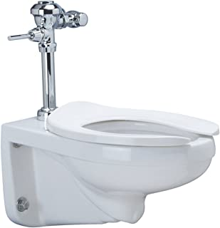 Best wall flush toilet Reviews
