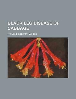 Black Leg Disease of Cabbage