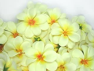 (100) Cream Hawaiian Plumeria Frangipani Silk Flower Heads - 3