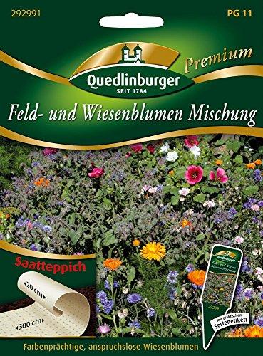 Feld-u. Wiesenblumenmischung von Quedlinburger Saatgut