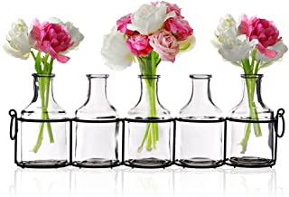 Emenest Small Glass Bud Vases for Flowers in Black Metal Rack Stand, Window-Sill Display Set of 5 Crystal Clear Flower Vase, Decorative Centerpiece for Home or Wedding