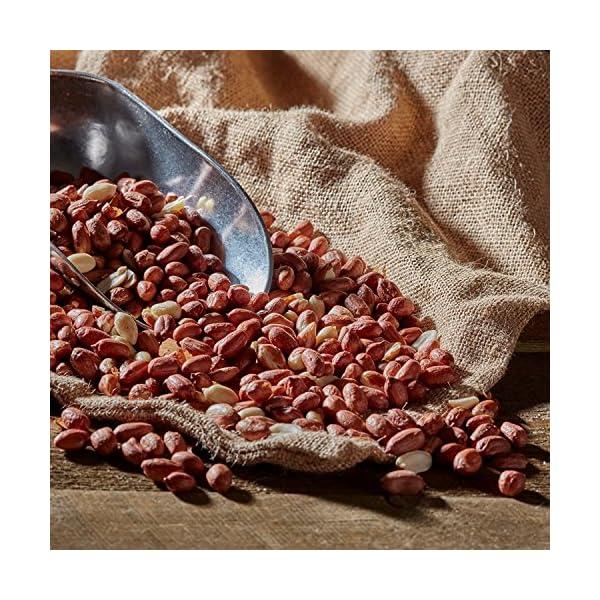 Happy Beaks Bird Peanuts Premium Grade Wild Bird Food Aflatoxin Tested