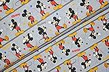 Swafing GmbH Disney Jersey Mickey Mouse Figuren - Stoff -