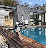 Cascada de acero inoxidable para piscina, piscina, modelo delfín con huevo y...