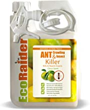 EcoRaider Ant & Crawling Insect Killer (32 OZ), 100% Fast Kills, Also Kills Fire Ants. Lasting Repellency, Safe for Childr...