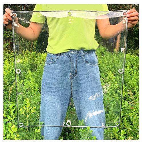 Jeseca Lona transparente para cubrir plantas, impermeable, PVC, con ojales, 400 g/m² (color: transparente, tamaño: 3 x 5 m)