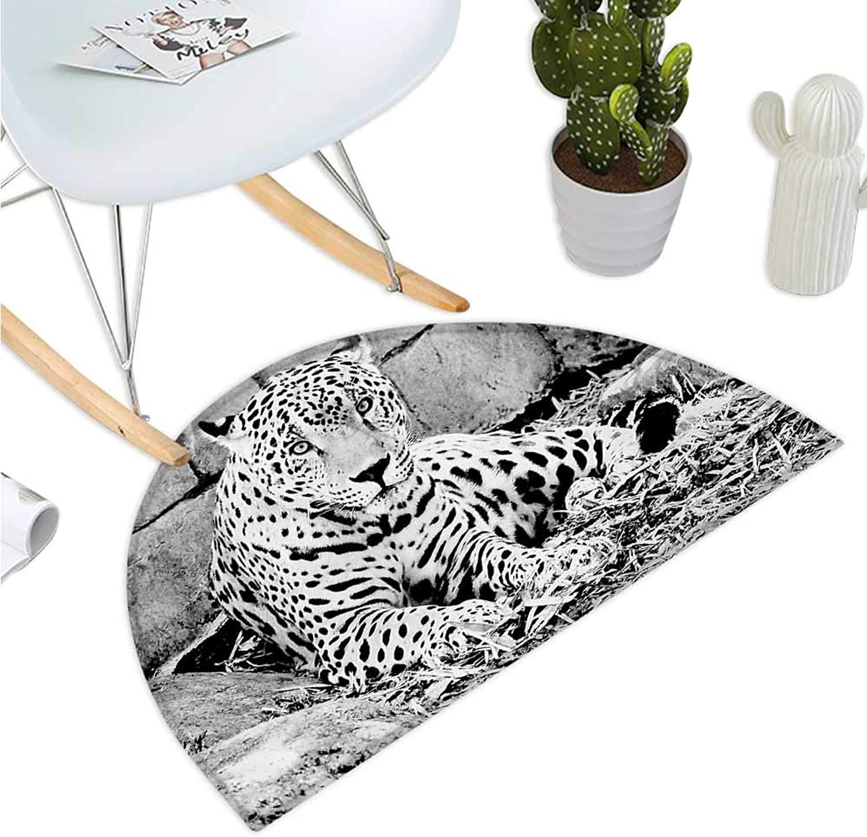 Black and White Semicircle Doormat Jaguar Wild Big Cats Theme Feline with Dots Body Fur Jungle Tiger Leopard Entry Door Mat H 35.4  xD 53.1  Black White