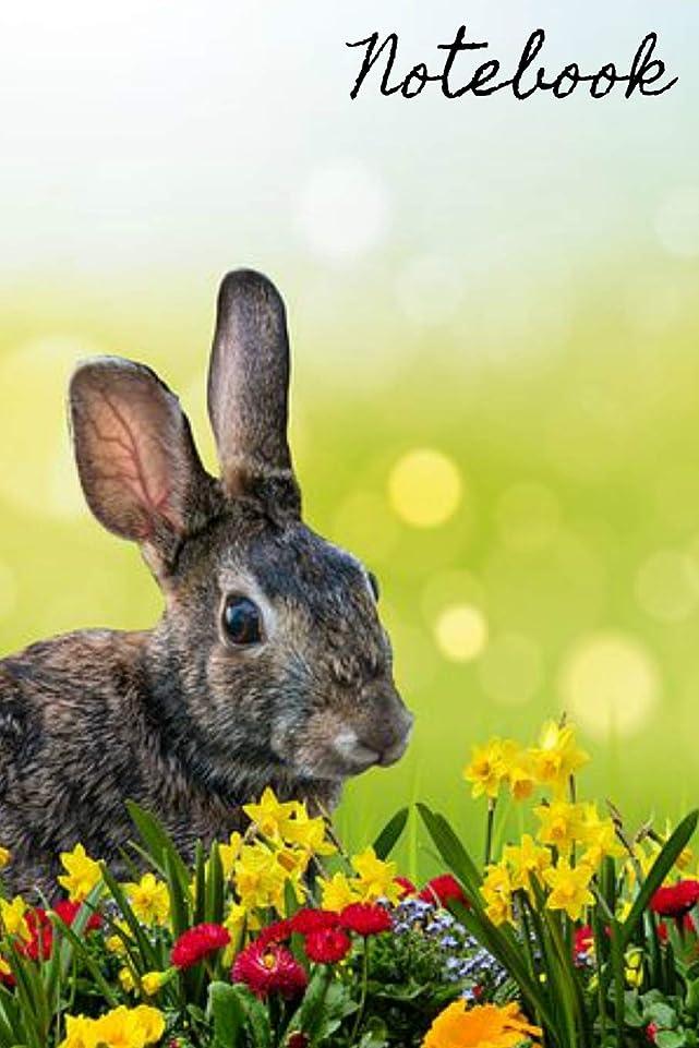 パンフレット選出する皮Notebook: Hare Rabbit Homework Book Notepad Notebook Composition and Journal Gratitude Diary