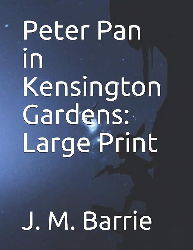 真空生態学検証Peter Pan in Kensington Gardens: Large Print